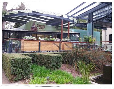 Adelaide botanic gardens for 129 north terrace adelaide